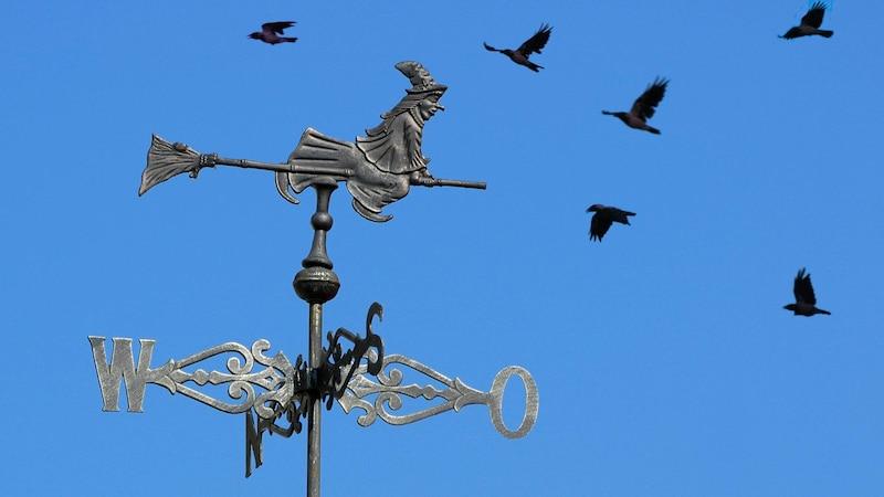 Dem Aberglauben nach verzauberten Hexen Vögel, die die Babys befielen und die Hexenmilch damit heraufbeschworen.