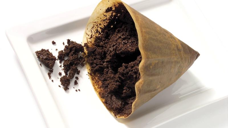 Kaffeesatz gegen Blattläuse: Wie Kaffee und andere Hausmittel Blattläuse abwehren