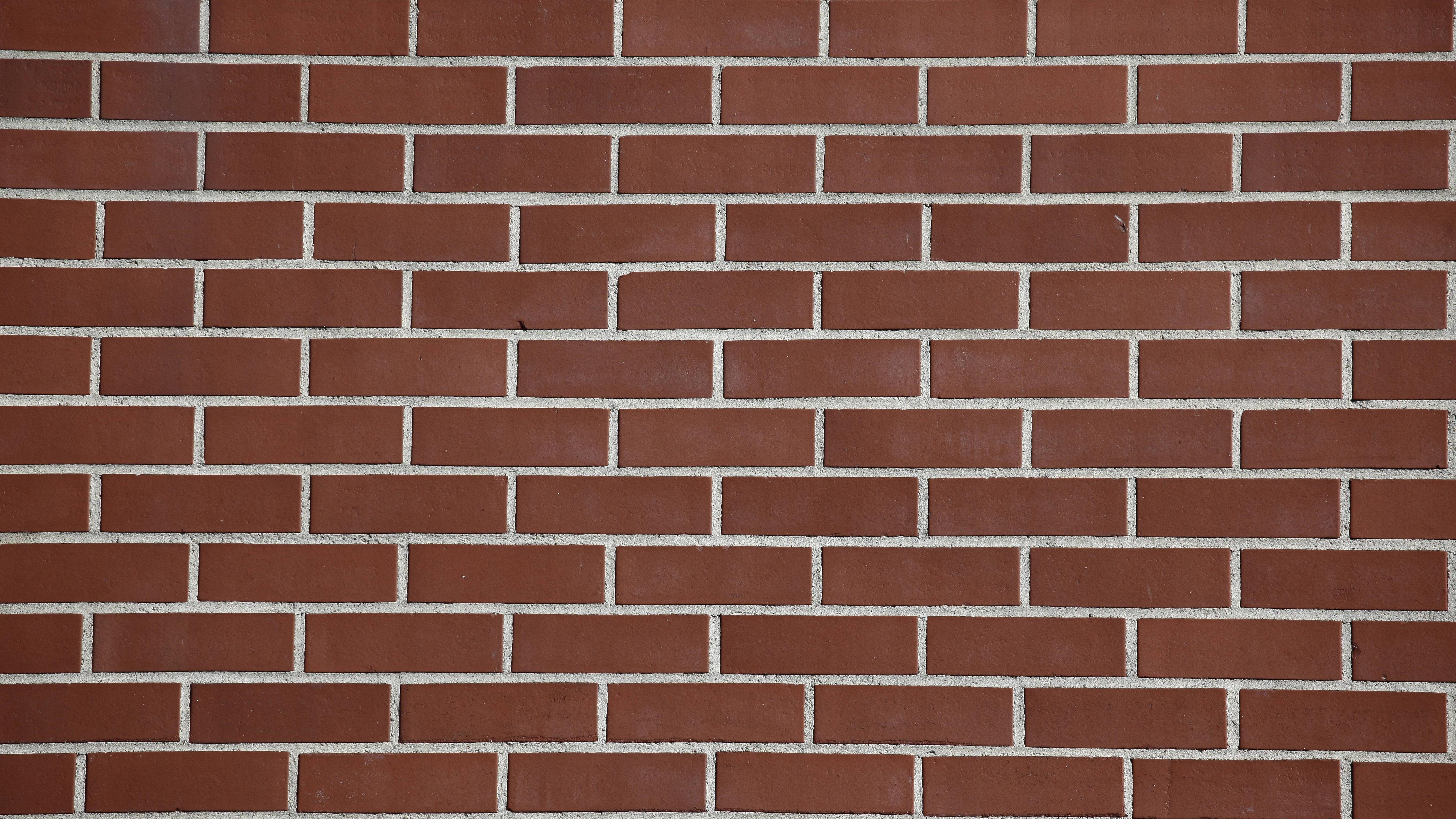 Feuchtes Mauerwerk sollten Sie alsbald trockenlegen, um hohe Sanierungskosten zu umgehen.