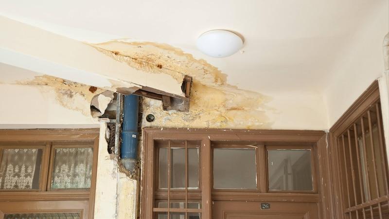 Wasserschaden in der Wohnung - Welche Versicherung zahlt was?