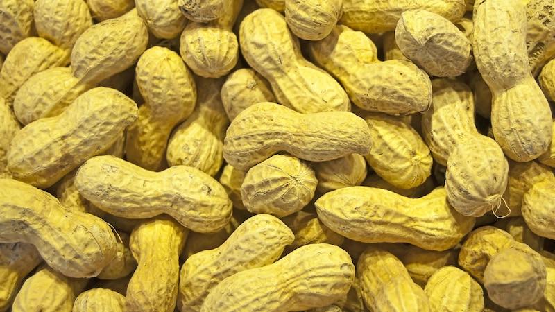 Sind Erdnüsse Nüsse? Das sollten Sie wissen
