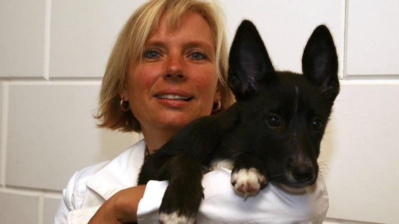 Alleine wohnen ohne Tiere? Für viele unvorstellbar! Ein Ehrenamt im Tierheim kann die Lösung sein.