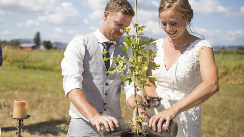 Als Paar können Sie einen gemeinsamen Baum pflanzen, statt bei der Hochzeit Ringe auszutauschen.