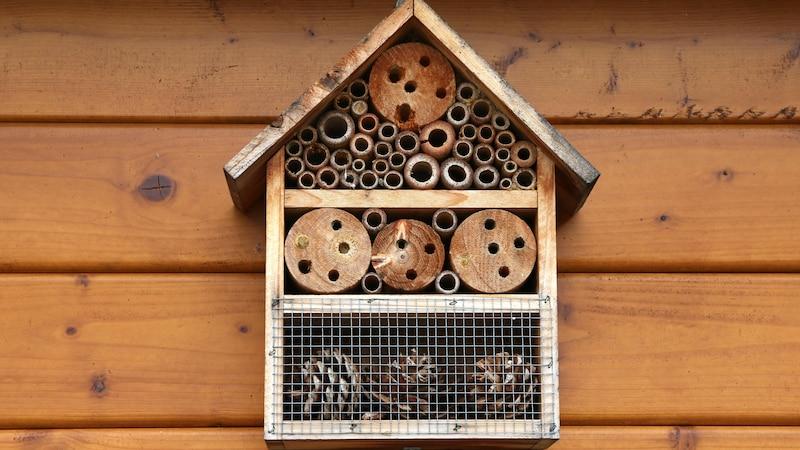 Insektenhotel: Lochgröße und Bohrungen - Alle Infos