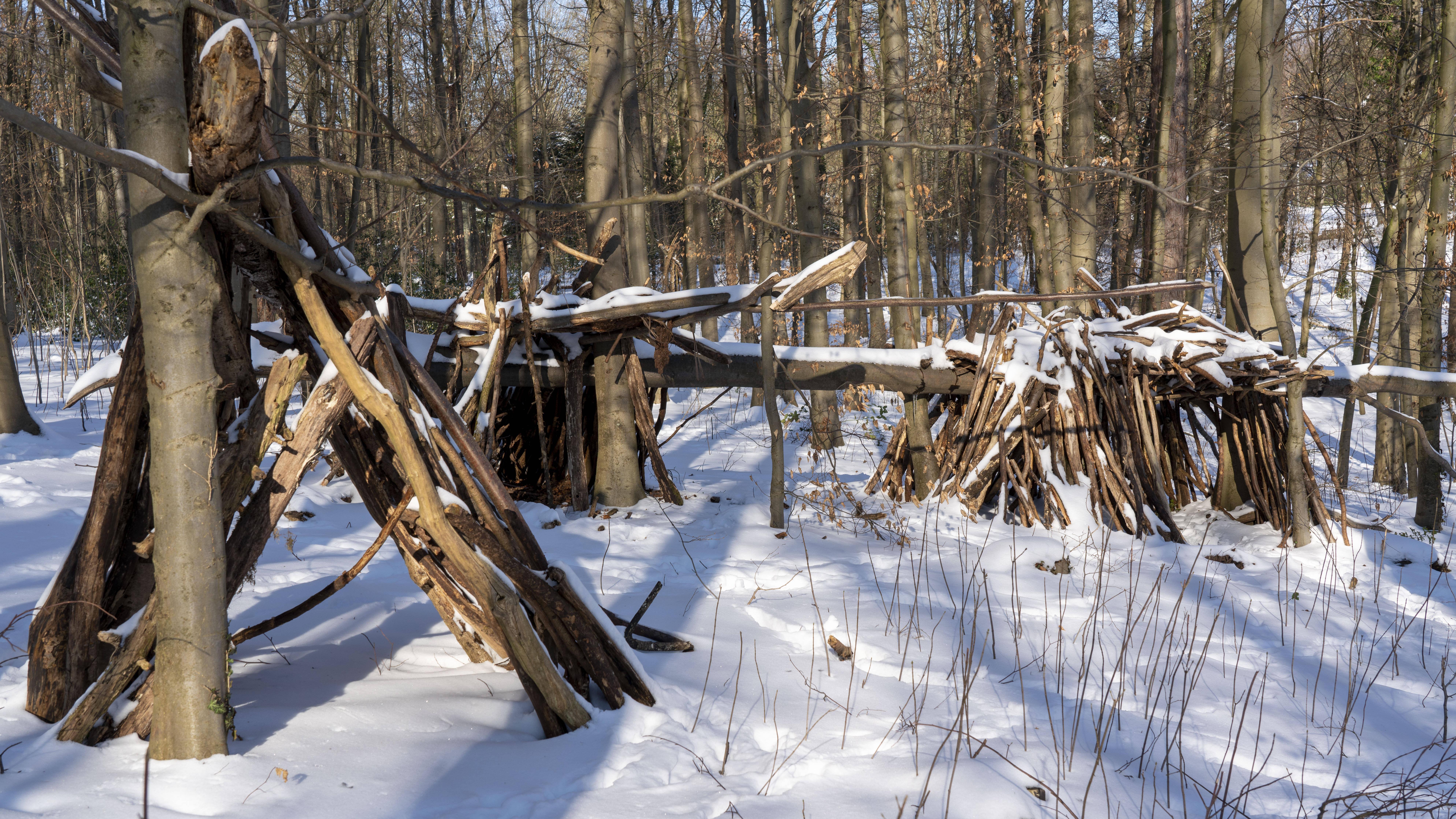 Mit wenigen Mitteln können Sie einen Unterschlupf im Wald bauen.