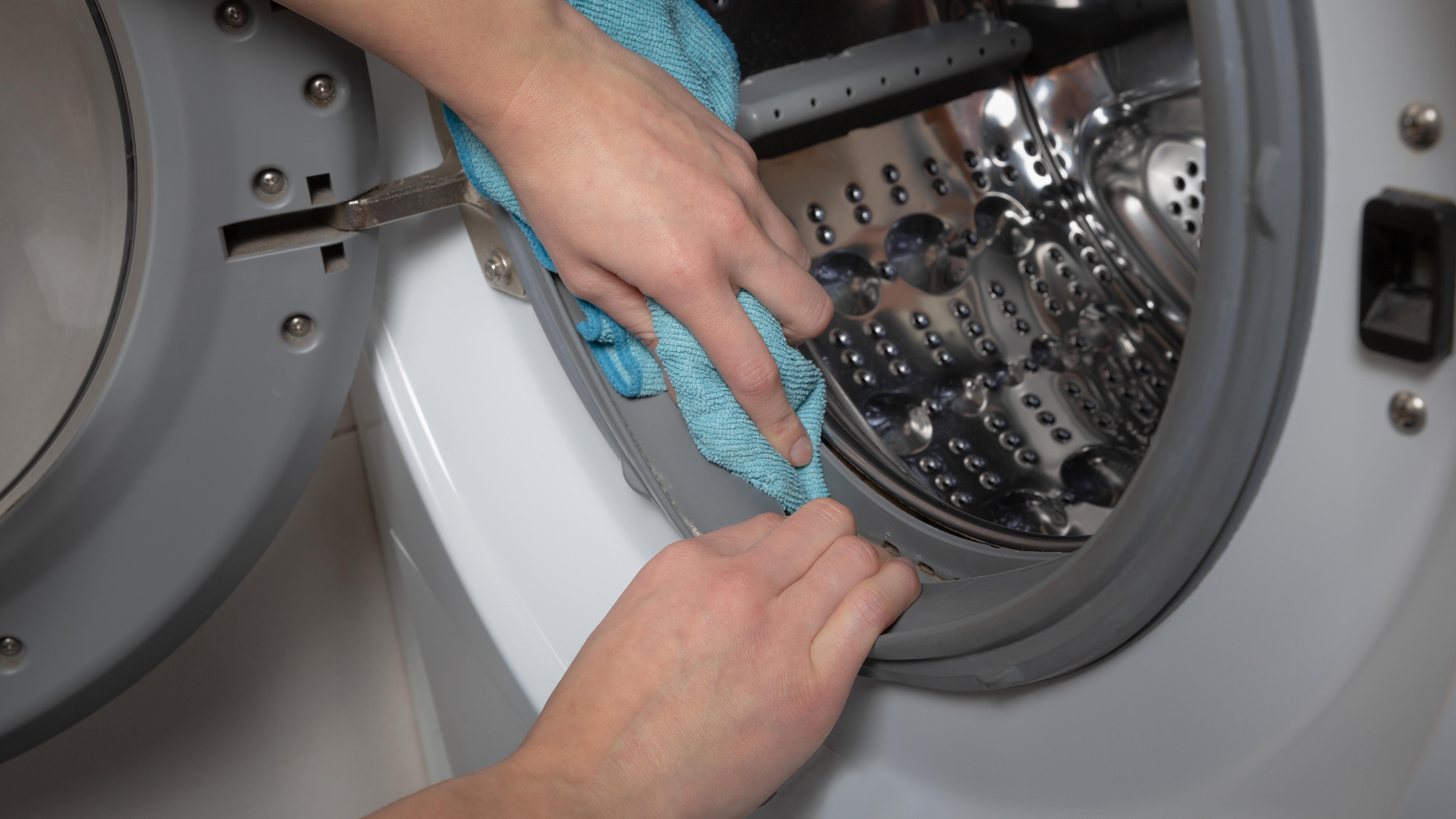 Die Gummidichtung Ihrer Waschmaschine reinigen sie am besten regelmäßig.