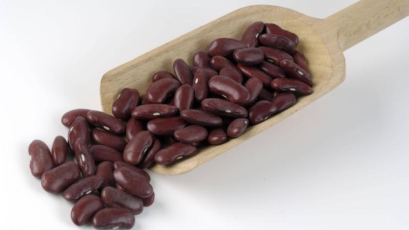 Vegane Eiweißquellen: Pflanzliche Lebensmittel mit viel Protein