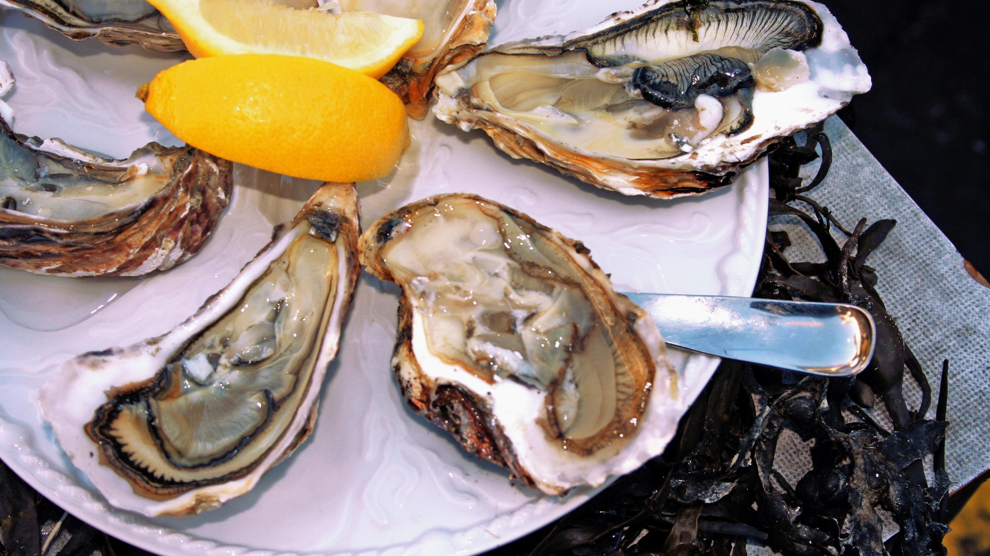 Austern zubereiten: Die besten Tipps und Tricks