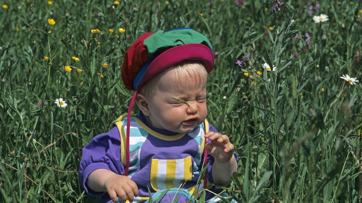 Kinder von Allergikern neigen ebenfalls oftmals zu Überempfindlichkeitsreaktionen.