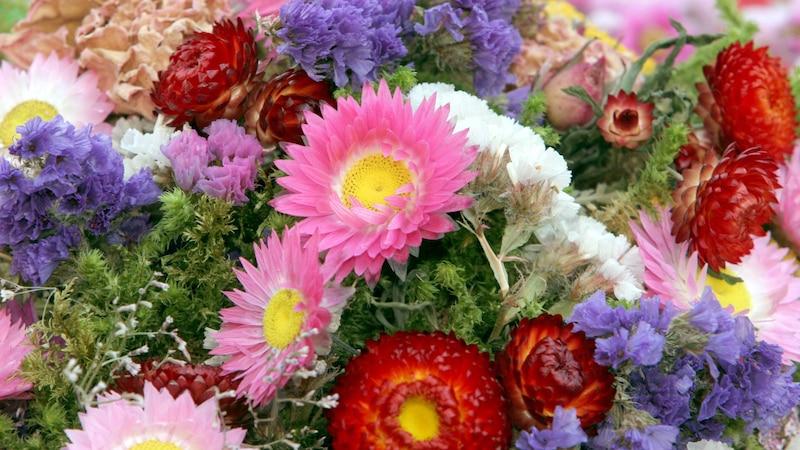 Nutzen Sie Kieselgel zum Blumen trocknen.