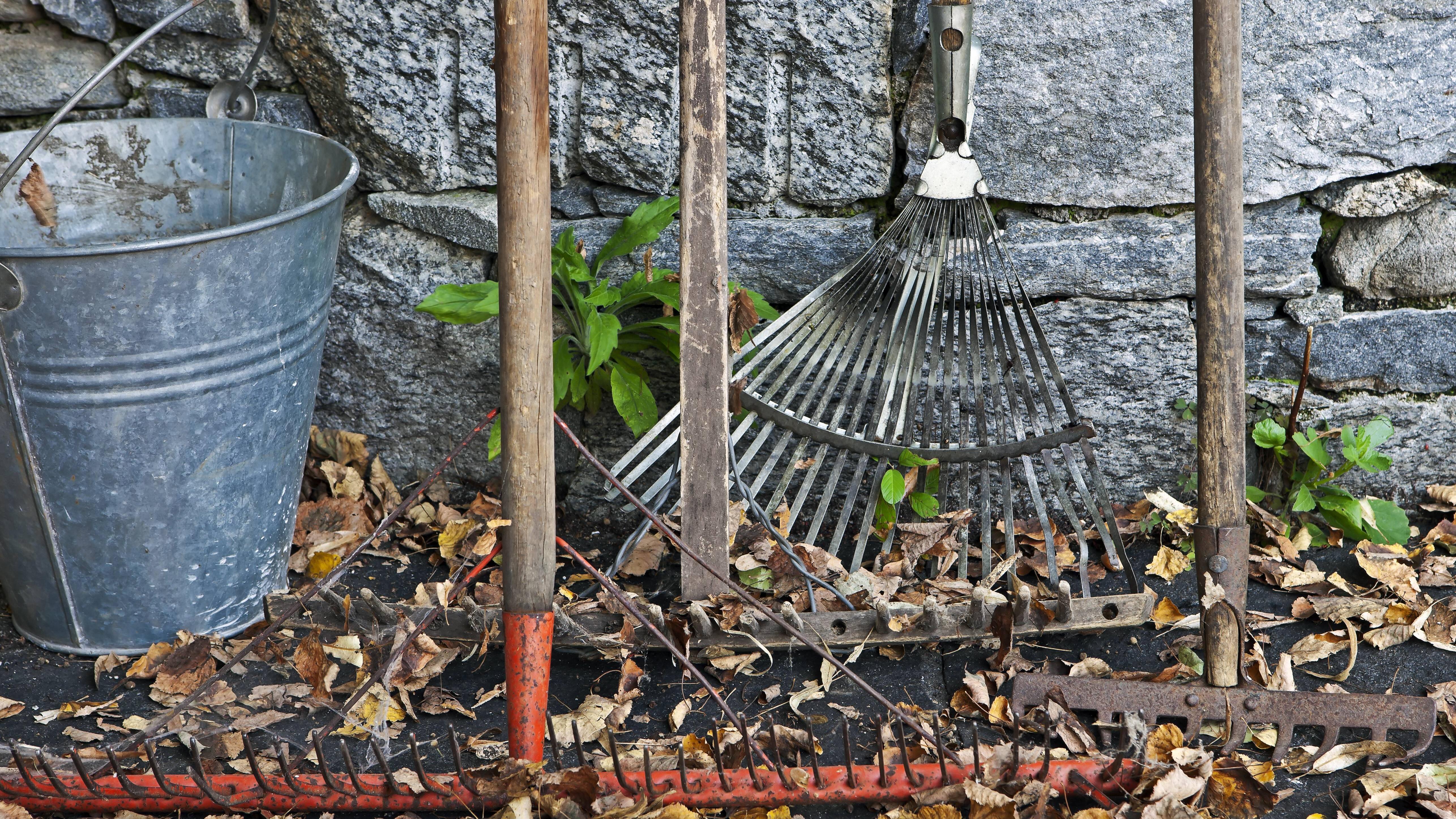 Gartengeräte verstauen ist wichtig, ansonsten fangen sie schnell an, zu rosten.