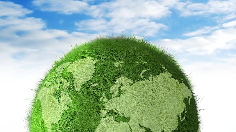 Nachhaltige Geschenke: Die 7 besten Tipps für sinnvolle, ökologische Geschenke