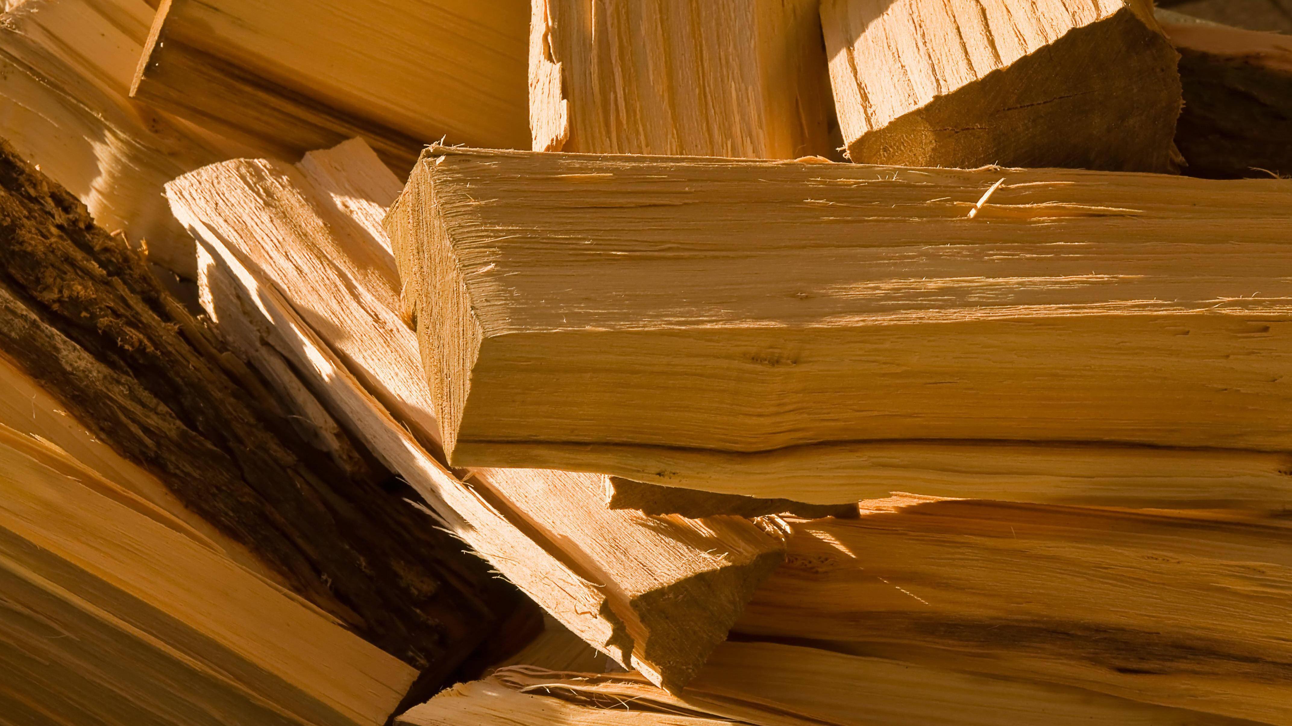 Feuerholz lagern: So schaffen Sie ideale Bedingungen