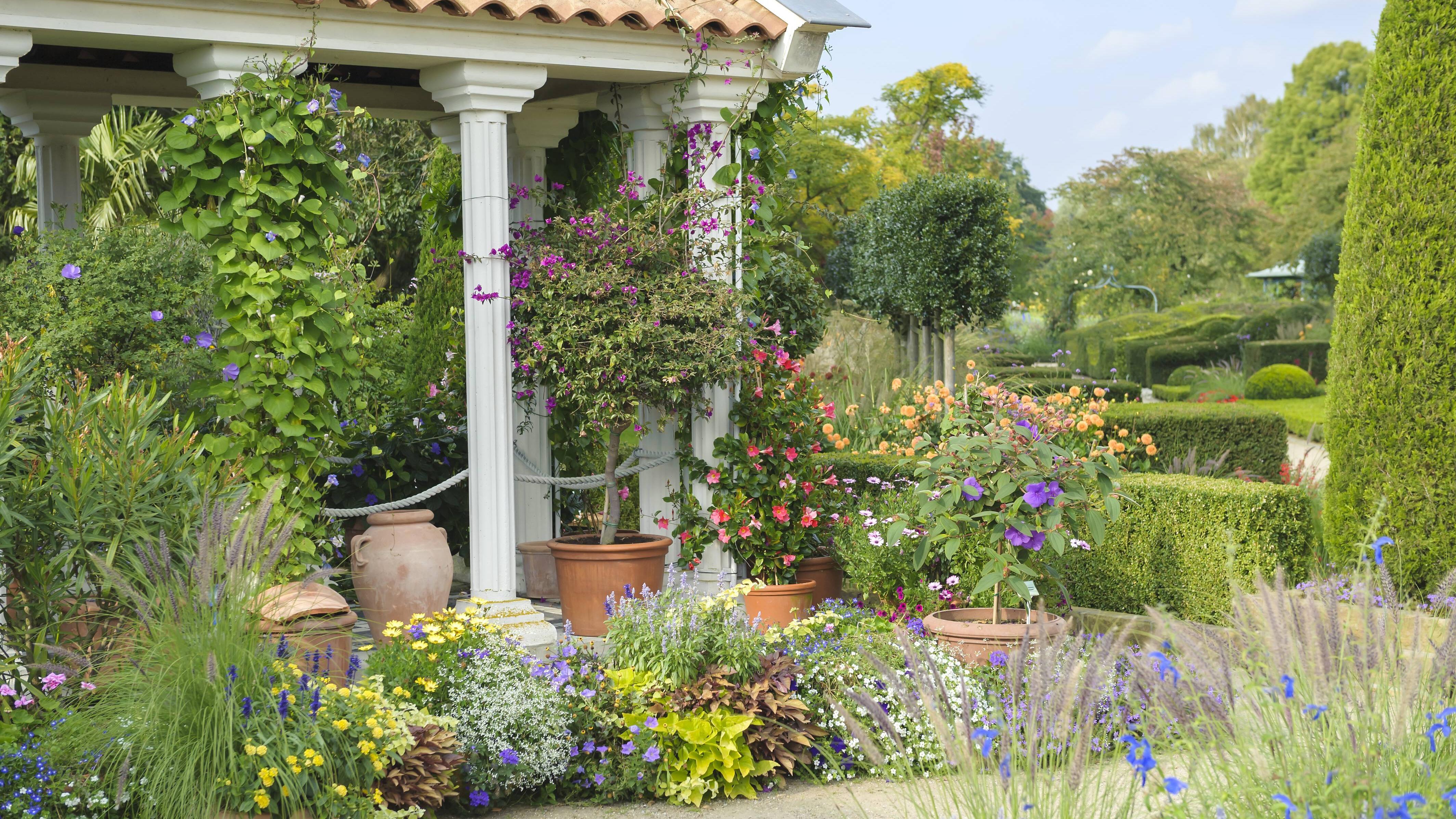 Hohe Balkonpflanzen liefern Entspannung und schützen vor neugierigen Blicken.
