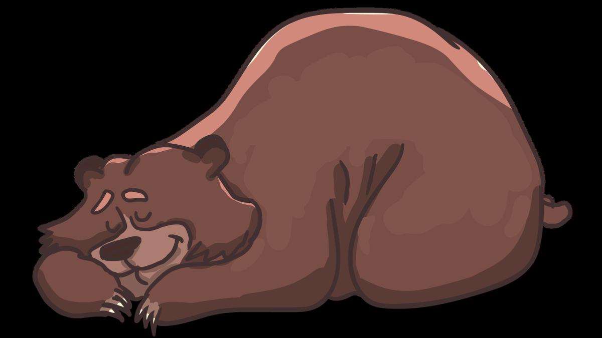 Jemandem einen Bären aufbinden bedeutet, jemandem eine große Lüge zu erzählen.