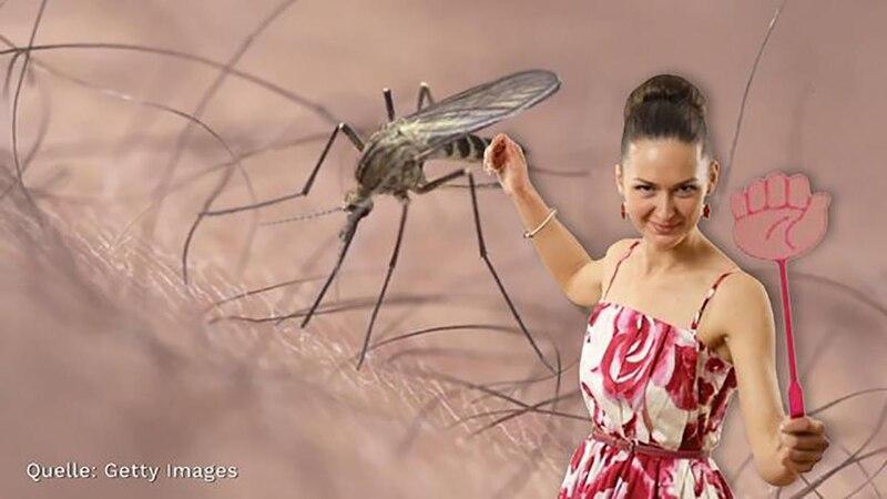 Mücken in der Wohnung: Das können Sie dagegen tun