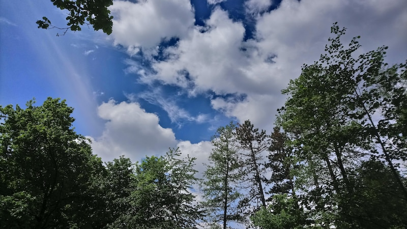 Warum ist der Himmel blau? Einfach erklärt