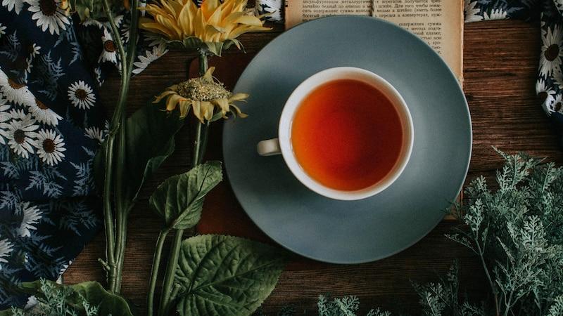 Tee anbauen: Tipps zu Pflanzung, Standort und Pflege
