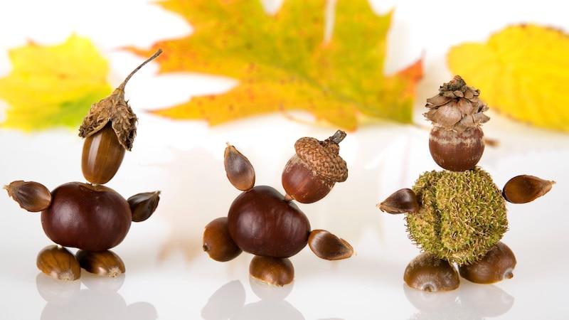 Aus Kastanien können Sie ganz einfach selber lustige Herbstfiguren basteln – wie wäre es zum Beispiel mit einem Käfer, einem Pferd oder einer Raupe?