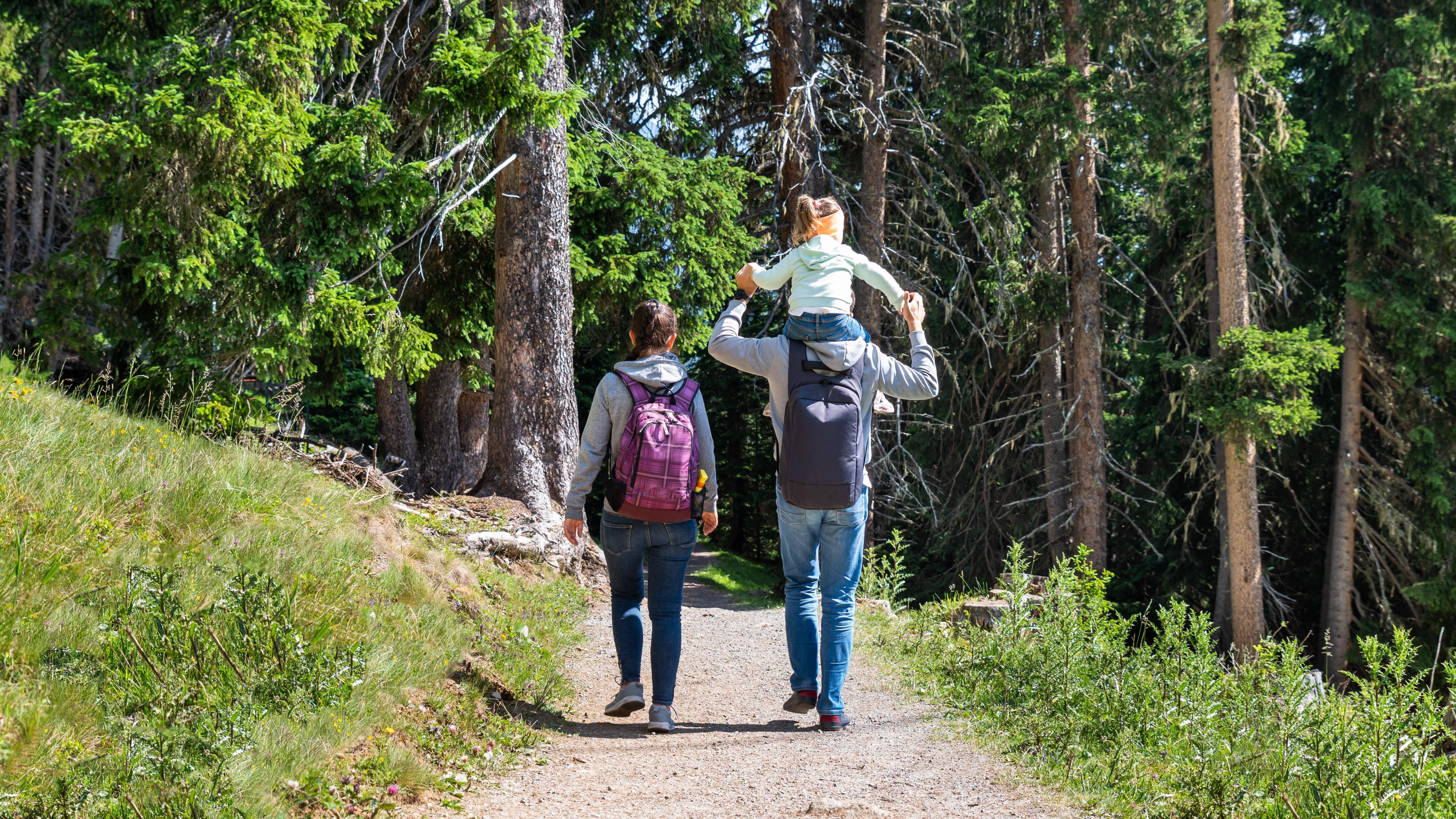 Beim Wandern mit Kindern möchten sich die Kleinen gern mal ausruhen.