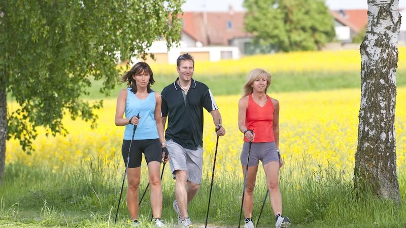 Mit Nordic Walking nehmen Sie am besten ab, wenn Sie in der Gruppen gehen und sich gegenseitig motivieren.