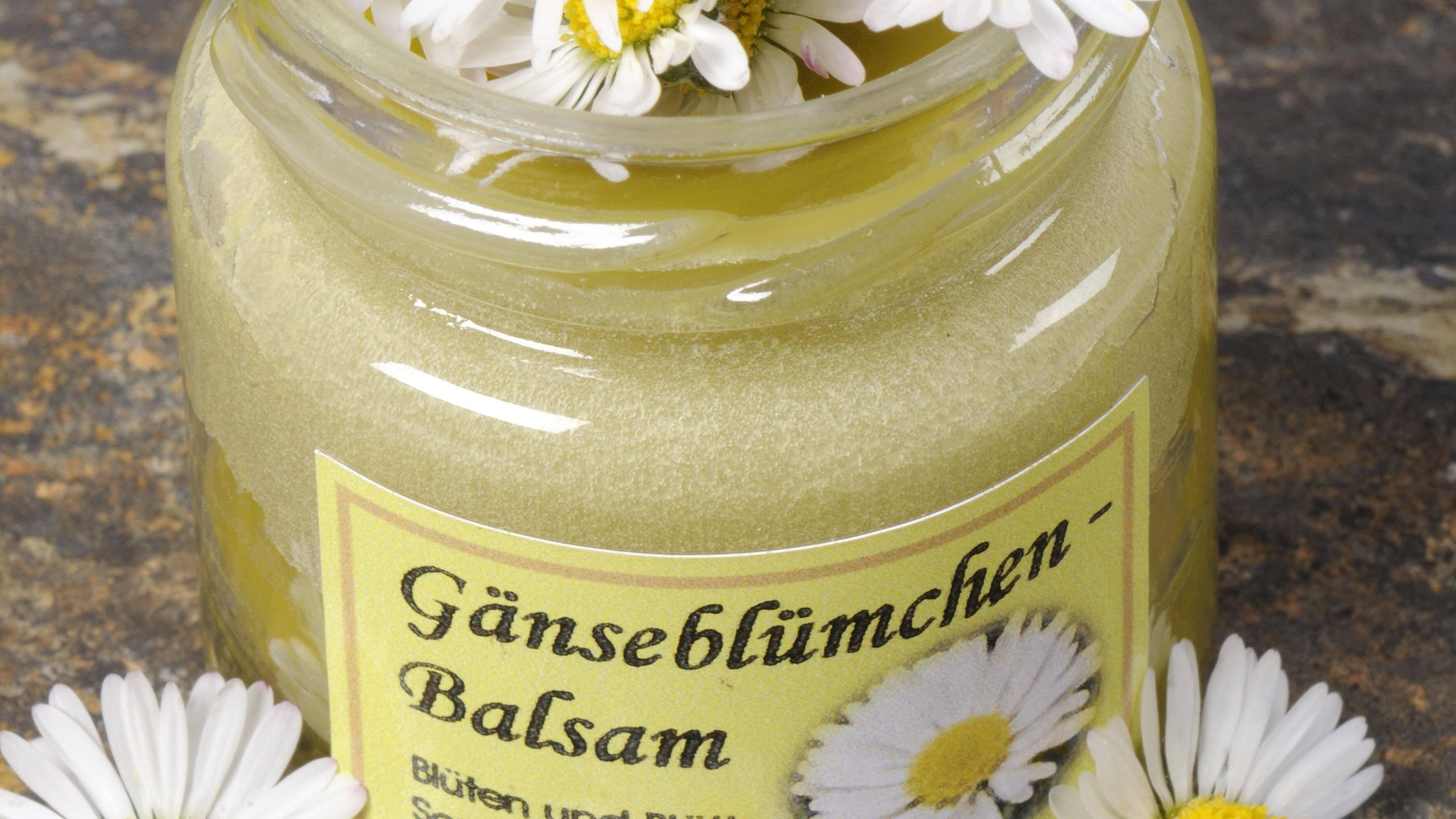 Gänseblümchen-Salbe selber machen: Heilender Balsam für Ihre Haut