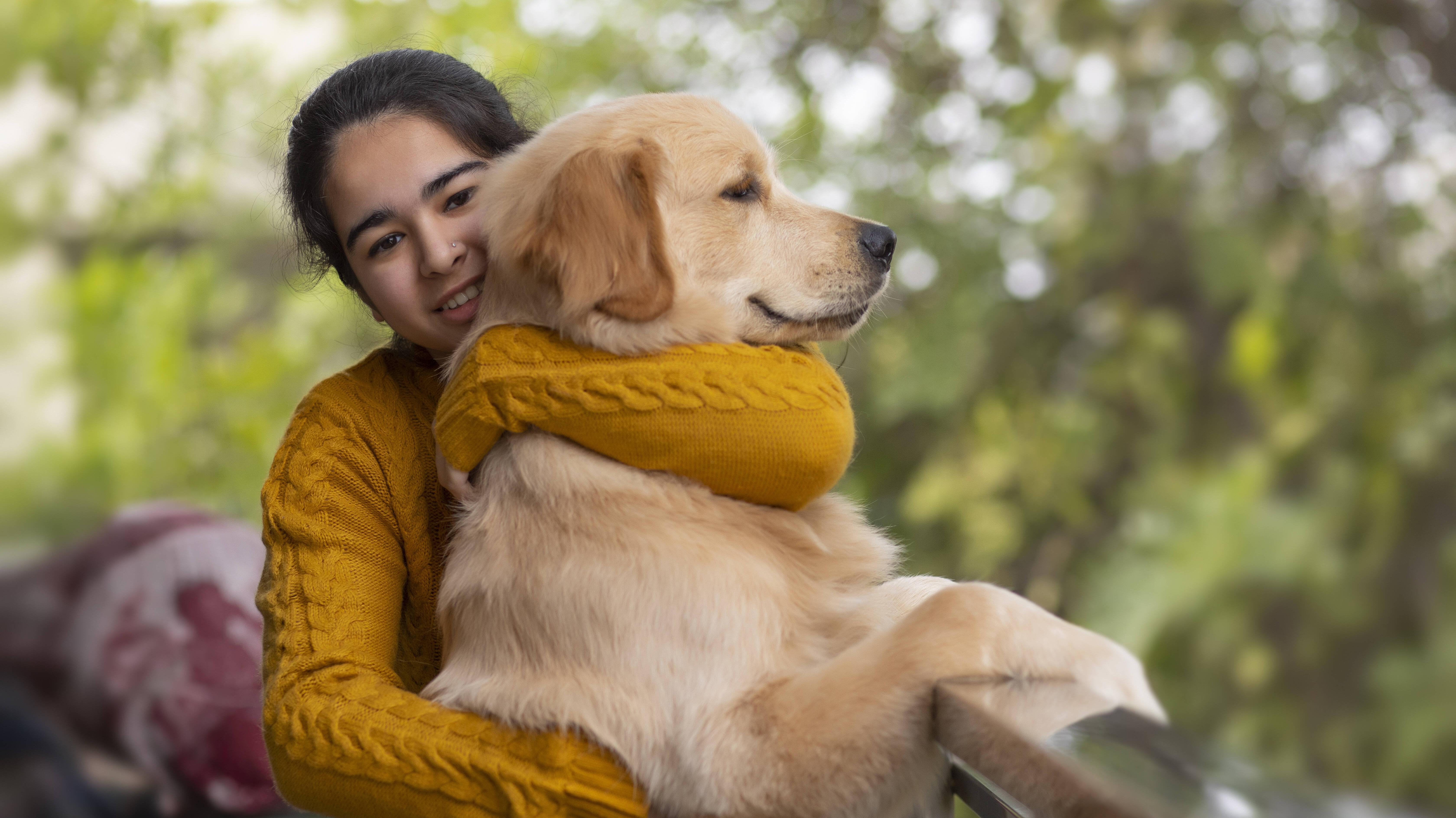 Einen Hund zu streicheln baut Stress bei Mensch und Tier ab. Das ist wissenschaftlich belegt. Hunde werden deshalb auch häufig zu Therapiezwecken eingesetzt.