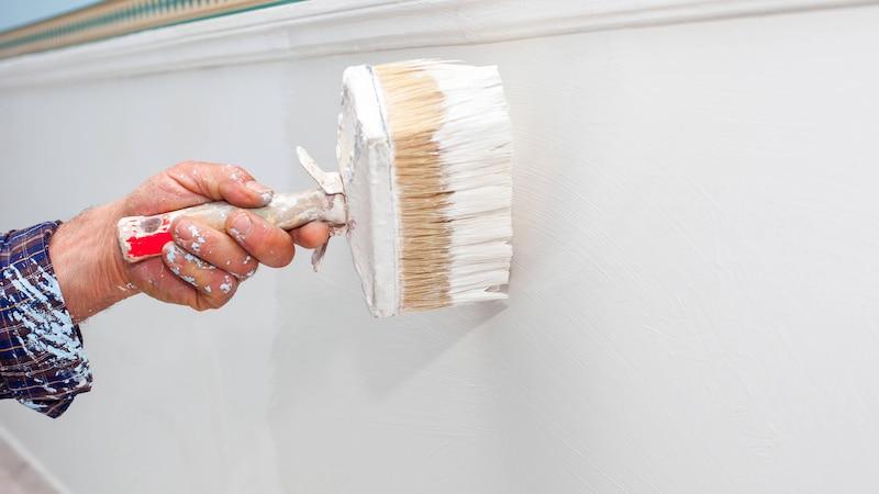 Wand streichen ohne Tapete: So funktioniert's