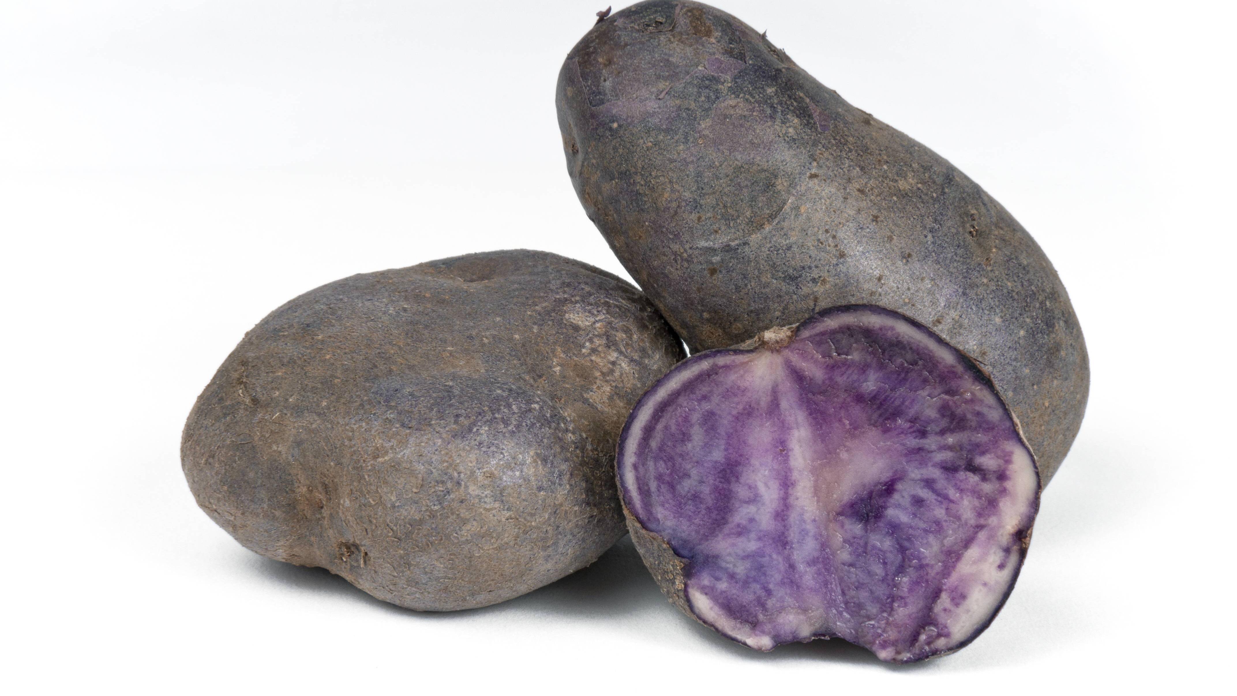 Blauer Schwede: Besonderheiten, Anbau und Pflege der Kartoffelart