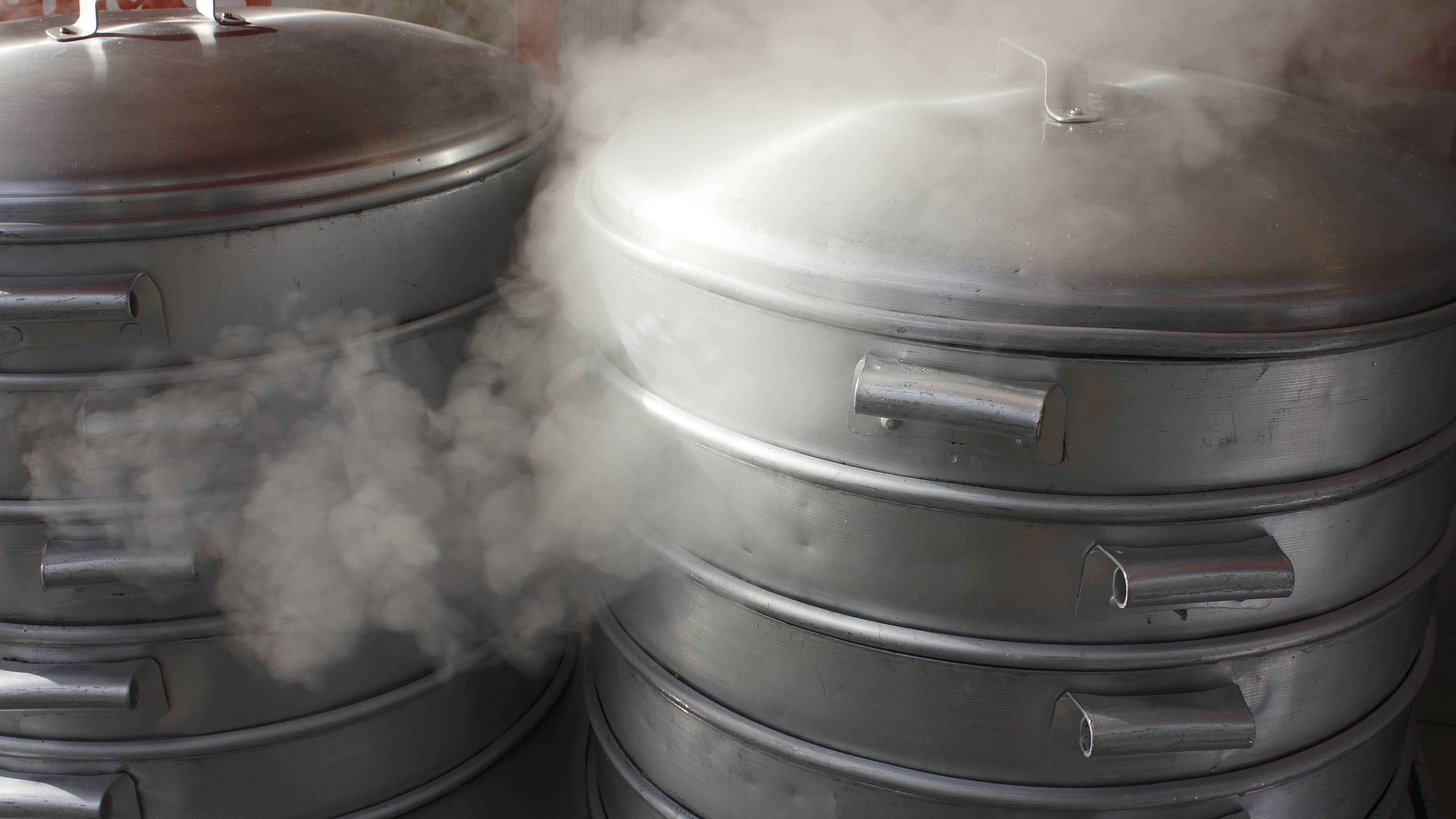 Alles Wissenswerte rund ums Dampfgaren