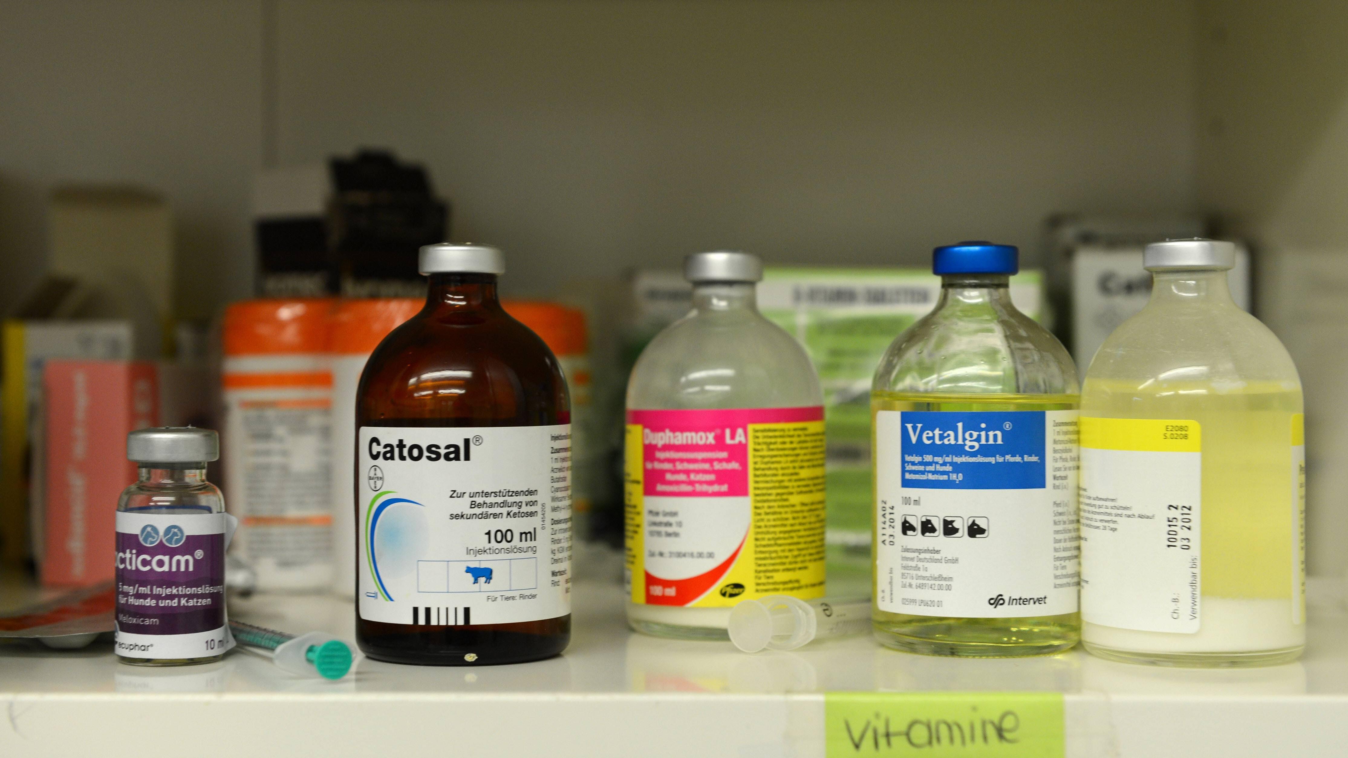 Richtig dosierte Medikamente sind der Schlüssel zur Heilung der Blasenentzündung.