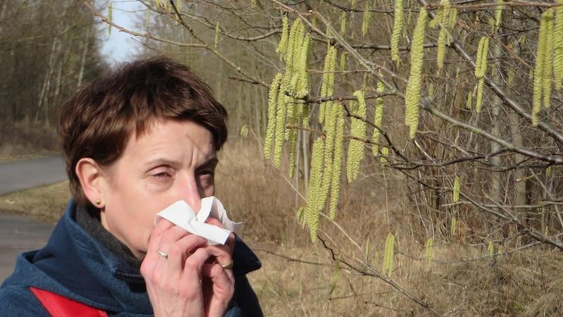 Beifuß-Allergie: Symptome und was Sie dagegen tun können