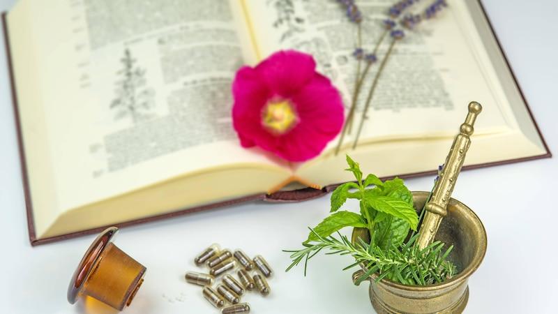 Wiesenkräuter lassen sich auch traditionell mit einem Pflanzenführer in gedruckter Form  bestimmen.