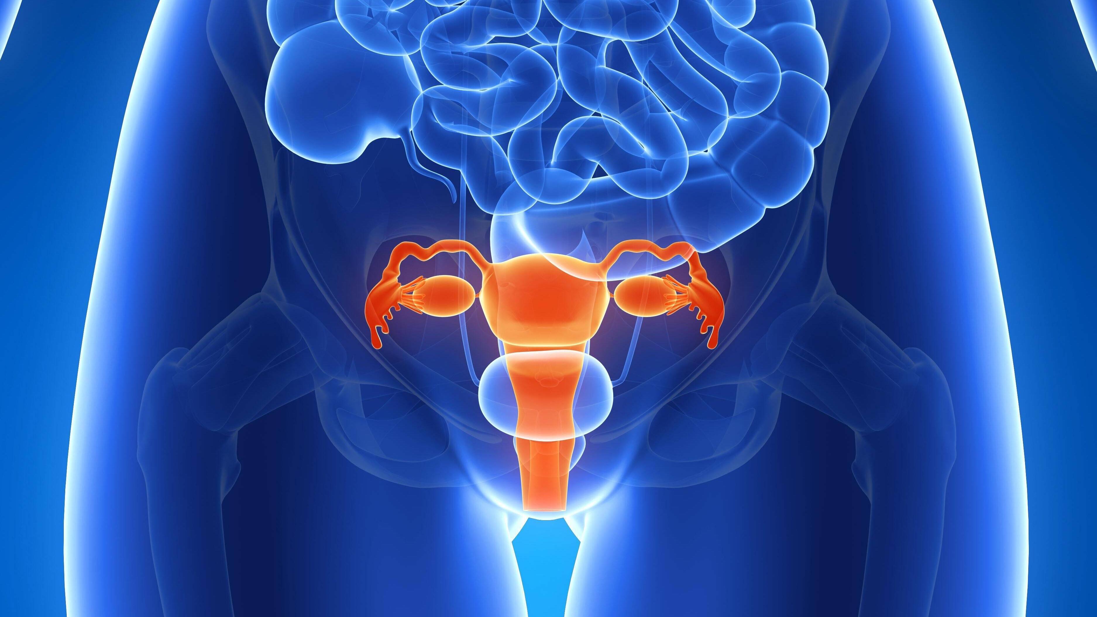 Zyste in der Gebärmutter: Ursachen, Symptome und Behandlungsmethoden
