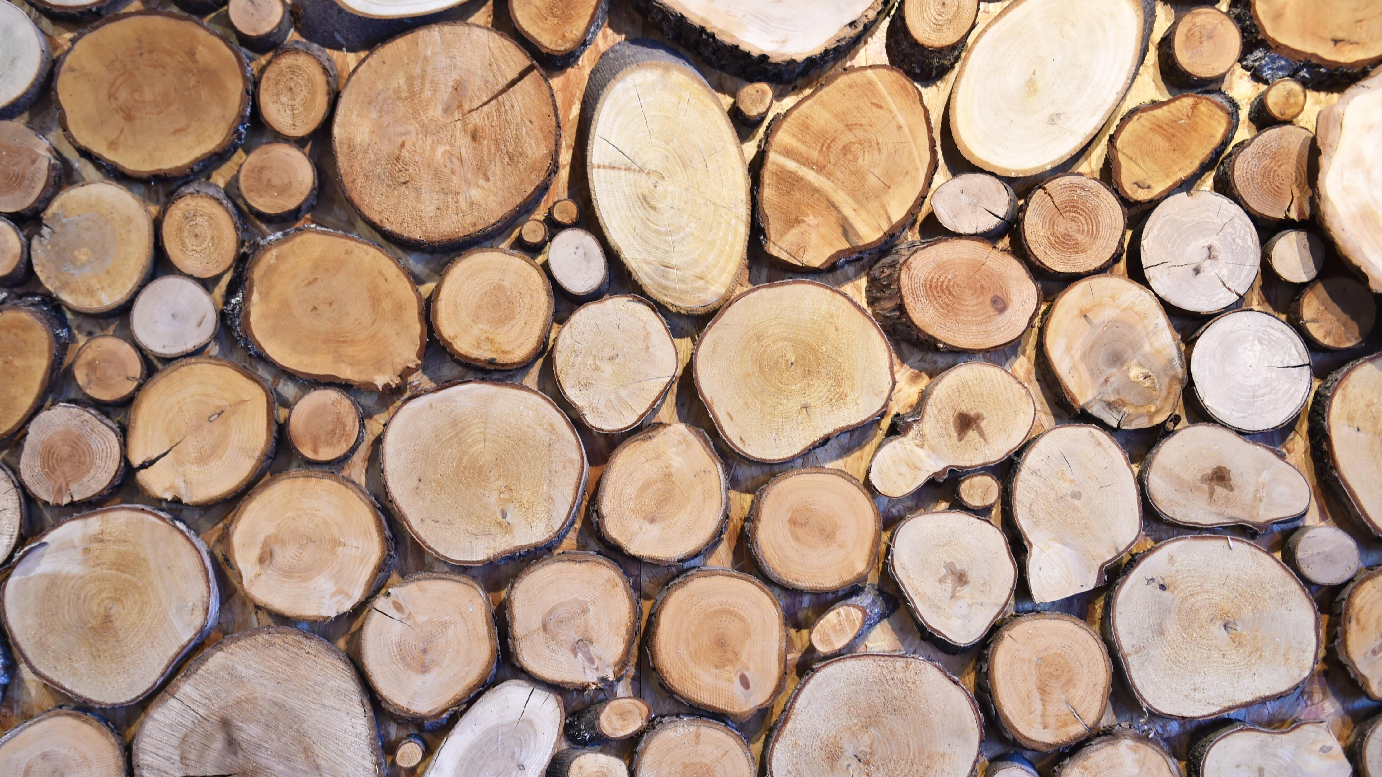 Basteln mit Baumscheiben: Die 3 besten DIY-Ideen