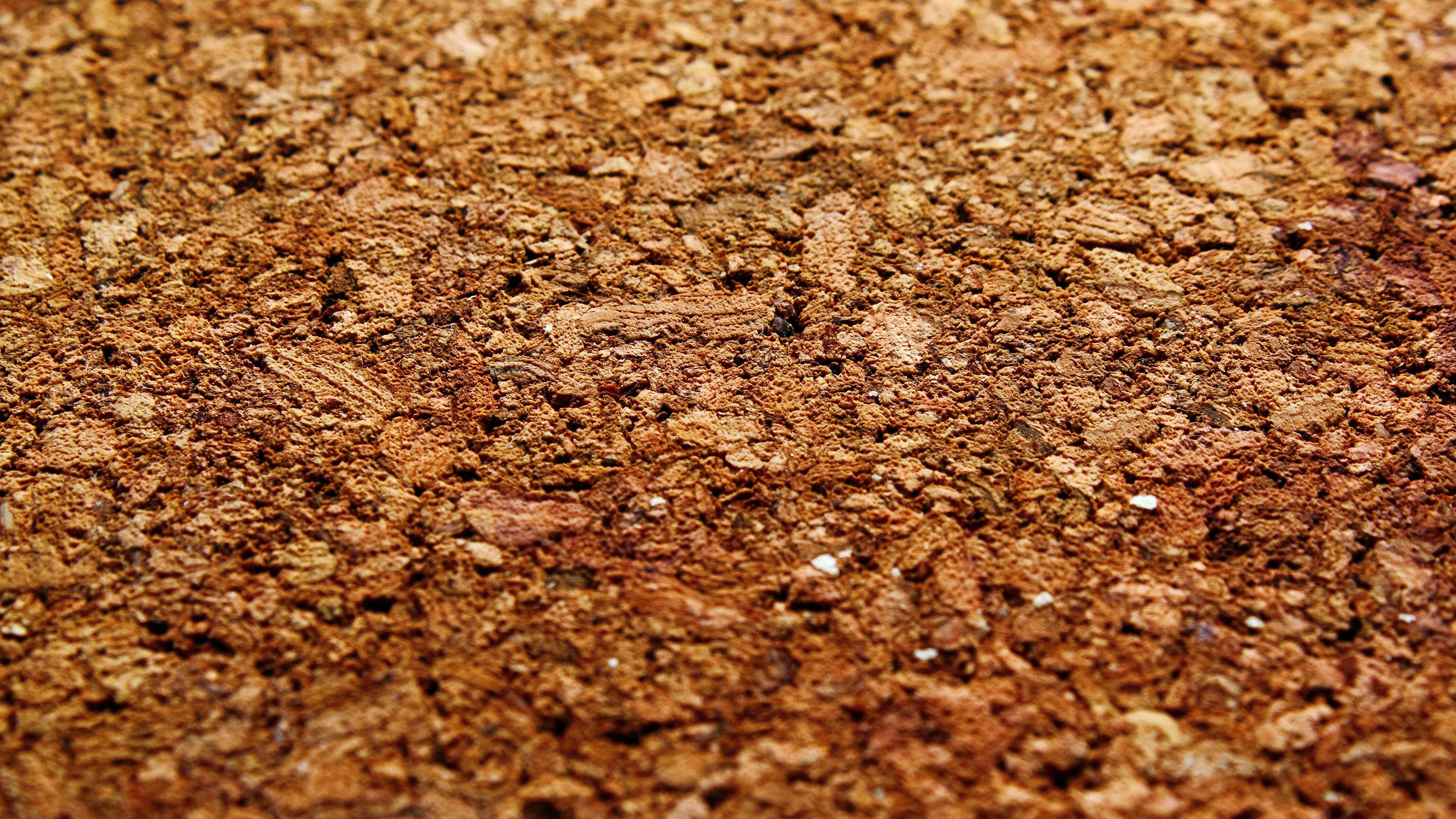 Alten Korkboden können Sie mit unserer Tipps ganz einfach selbst entfernen.