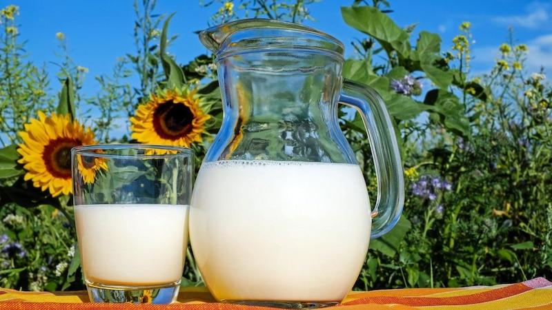 Haselnussmilch selber machen: So einfach geht's