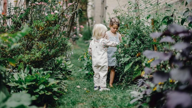 Seinen Garten schön zu gestalten hilft dabei, sich zuhause wohlzufühlen.