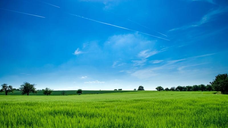 Bauernregeln September: Die besten Wetter-Regeln mit Erklärung