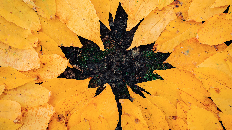 Basteln mit Herbstblättern: 8 kreative Ideen