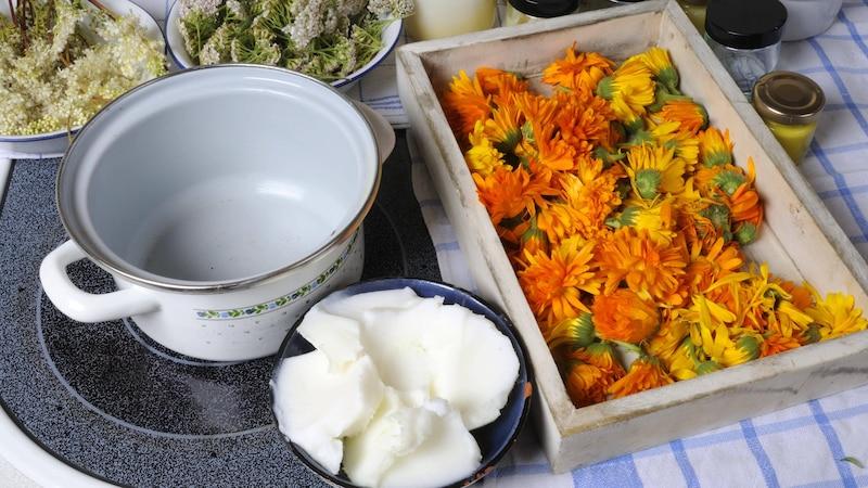 Entzündungshemmende Salbe selber machen: DIY-Rezept und Anleitung