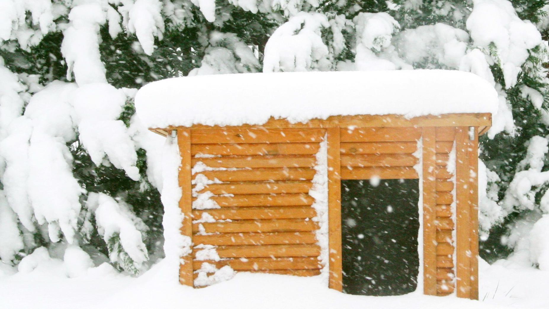 Eine richtige Isolierung der Hundehütte ist vor allem in den Wintermonaten besonders wichtig
