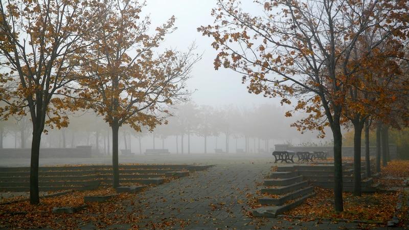 Warum es im Herbst so häufig Nebel gibt - einfach erklärt