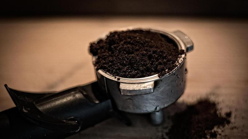 Kaffeesatz gilt als natürliches Hausmittel gegen Dickmaulrüssler.