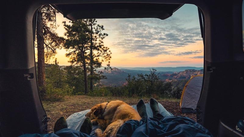 Im Auto schlafen: Die besten Tipps und Tricks für die Übernachtung im Auto