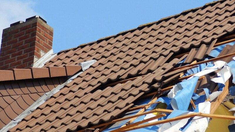 Sturmschaden: So kommen Versicherte an einen Windstärke-Nachweis