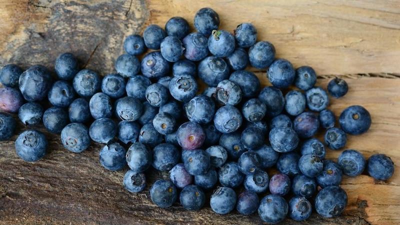 Blaubeeren und ihre gesunden Inhaltsstoffe (Bild: Pixabay)