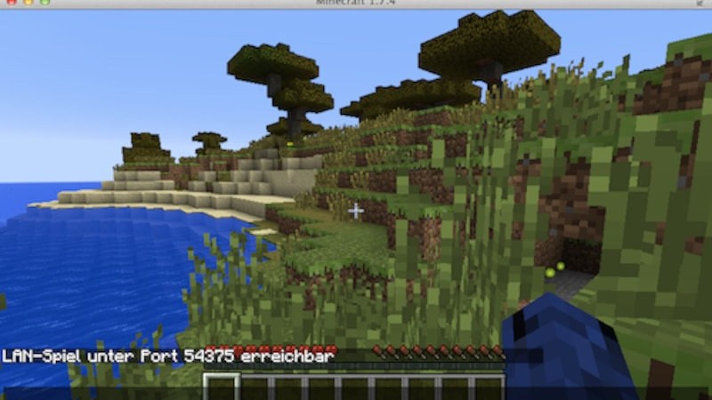 Minecraft über LAN spielen